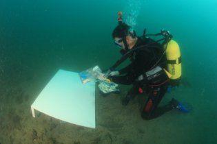 В Криму створили найбільшу підводну картину