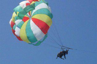 Британський таблоїд The Sun купив російську ослицю-парашутистку