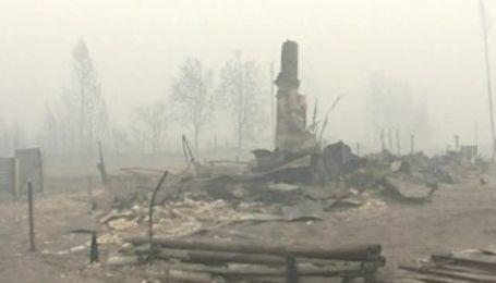 Жертвами лесных пожаров в России стали полсотни человек