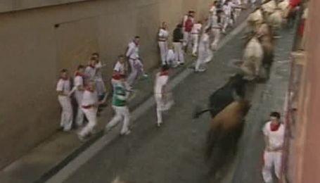 В Испании несколько человек получили ранения, убегая от быков