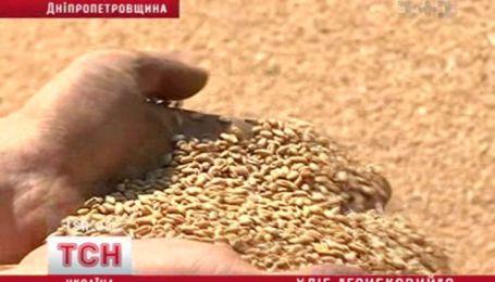 Ливни и жара уничтожают урожай