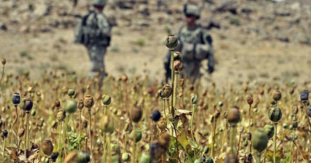 Афганістан, Кандагар. Американські солдати під час патрулювання біля макового поля в районі Шавалі Кот провінції Кандагар. @ AFP