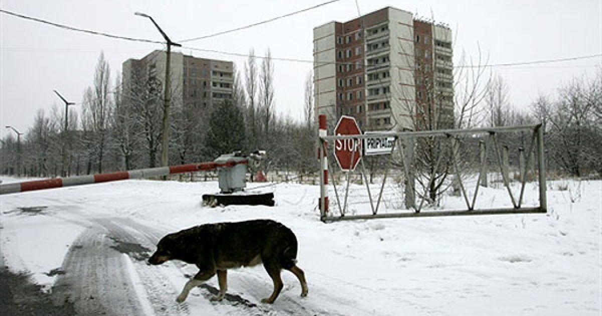 На початок 2010 року на території зони відчуження мешкало більше 250 людей у 10 різних селах, з них більше 100 людей - у місті Чорнобиль. @ AFP