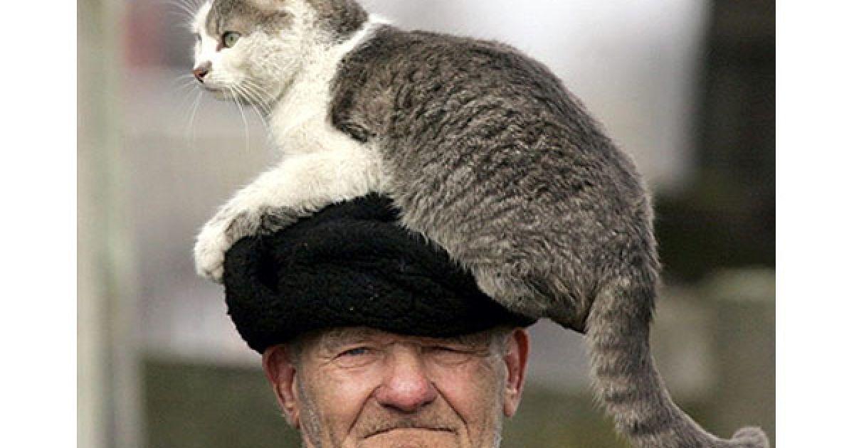 Білорусь, Стрелічево, 30-км зона. Євген Штанюк і його кішка. @ AFP