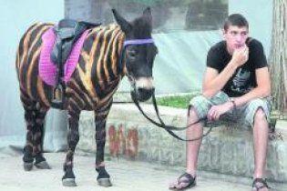 Крымского осла заставили работать зеброй