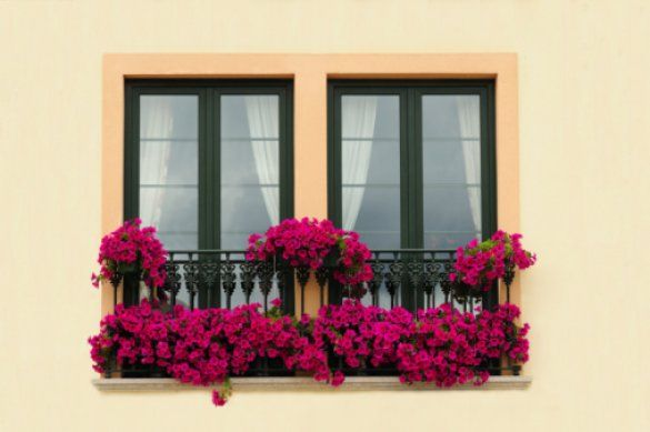 Цветущий балкон_1