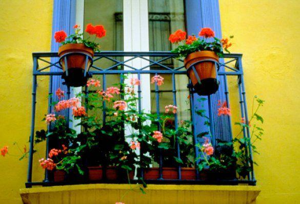 Цветущий балкон_5