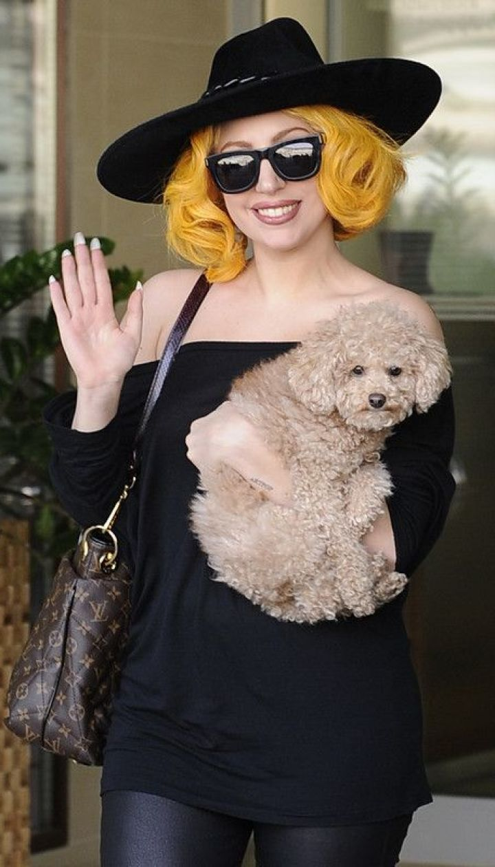 Леди Гага @ Фото EPA/UPG