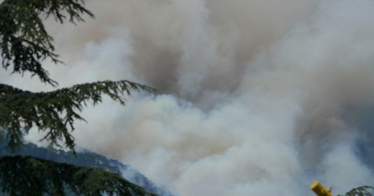 Причиной пожара в районе горы Лопата стал поджог @ yalta-gs.gov.ua