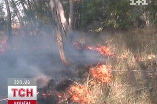 Украинцам запретили ходить в лес