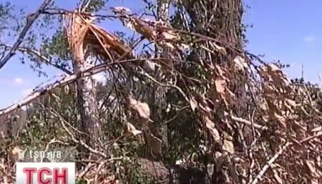 Вторая волна урагана пронеслась по Черниговщине