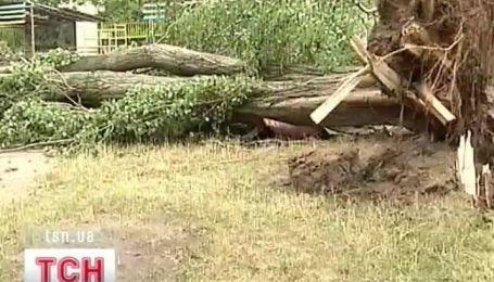 Ураган в Черкасской области унес жизнь одного человека, а 15 травмировал
