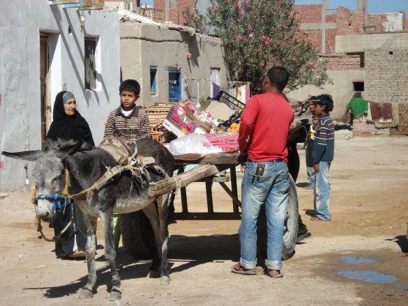 Египет_2