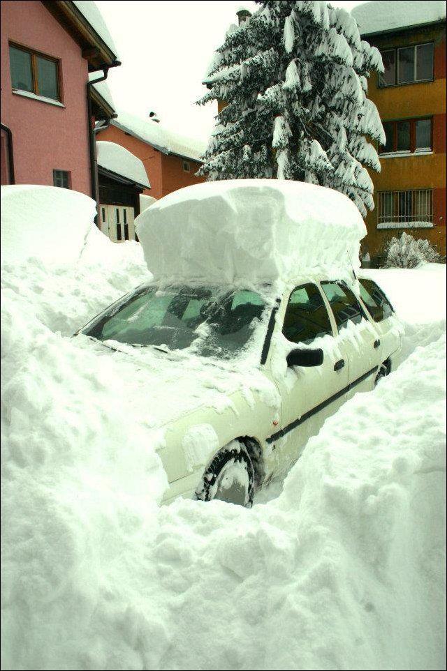 смешное фото снегопада того