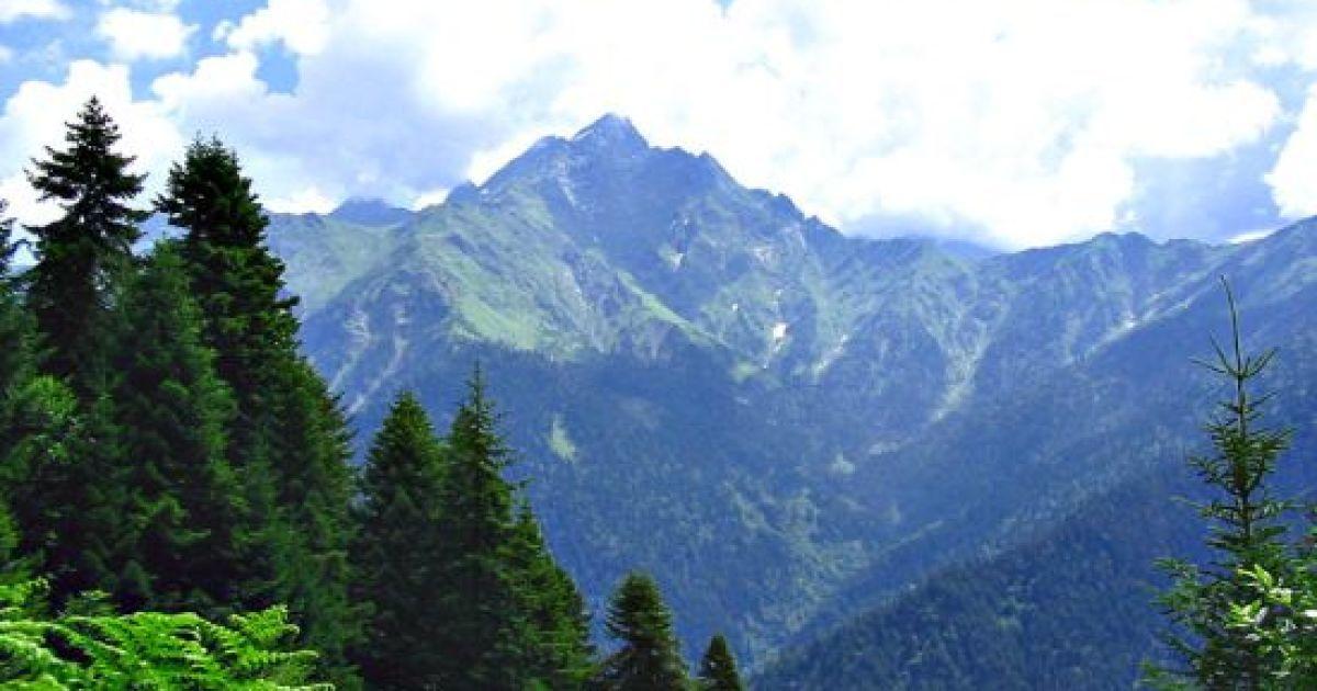 В Грузії є все, що треба для відпочинку: гори, море, багата історія та гарні люди. Фото countries.turistua.com
