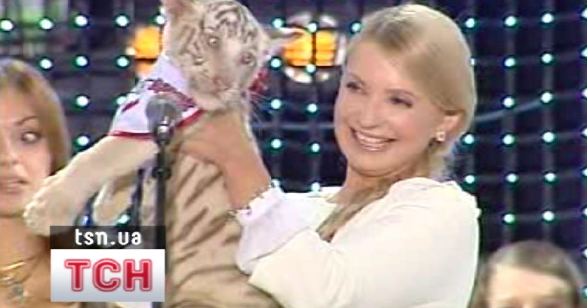 Тимошенко стала власницею маленької бенгальської тигриці
