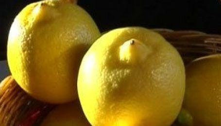Як вирощувати лимони?