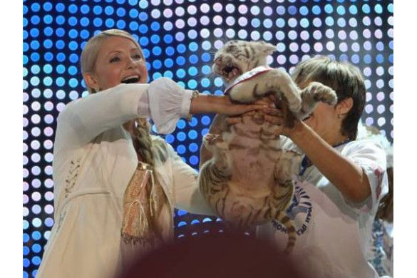 Юлії Тимошенко подарували тигреня
