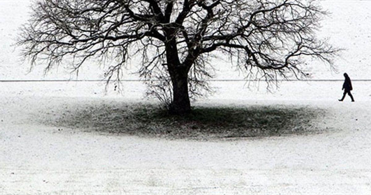 Німеччина, Альтдорф. Чоловік гуляє засніженим полем поблизу південного німецького міста Альтдорф. @ AFP