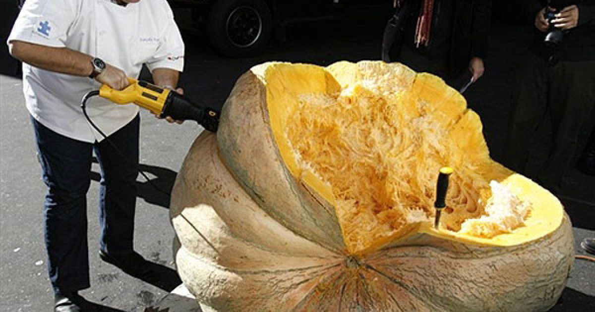 """США, Нью-Йорк. Шеф-кухар Франсуа Пайар розрізає гарбуз вагою майже 650 кг, який пожертвували для акції """"Міський врожай"""", під час якої найкращі шеф-кухарі продемонструють свої оригінальних рецепти страв з гарбуза. Акцію """"Міський врожай"""" проводять, щоб передати їжу тим, хто живе на вулицях Нью-Йорка. @ AFP"""
