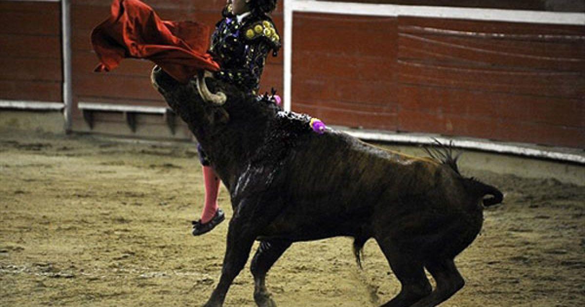 Колумбія. Мексиканська 15-річна жінка-тореадор Паола Сан-Роман потрапила на роги бика під час кориди на арени Канавералехо у місті Калі. @ AFP