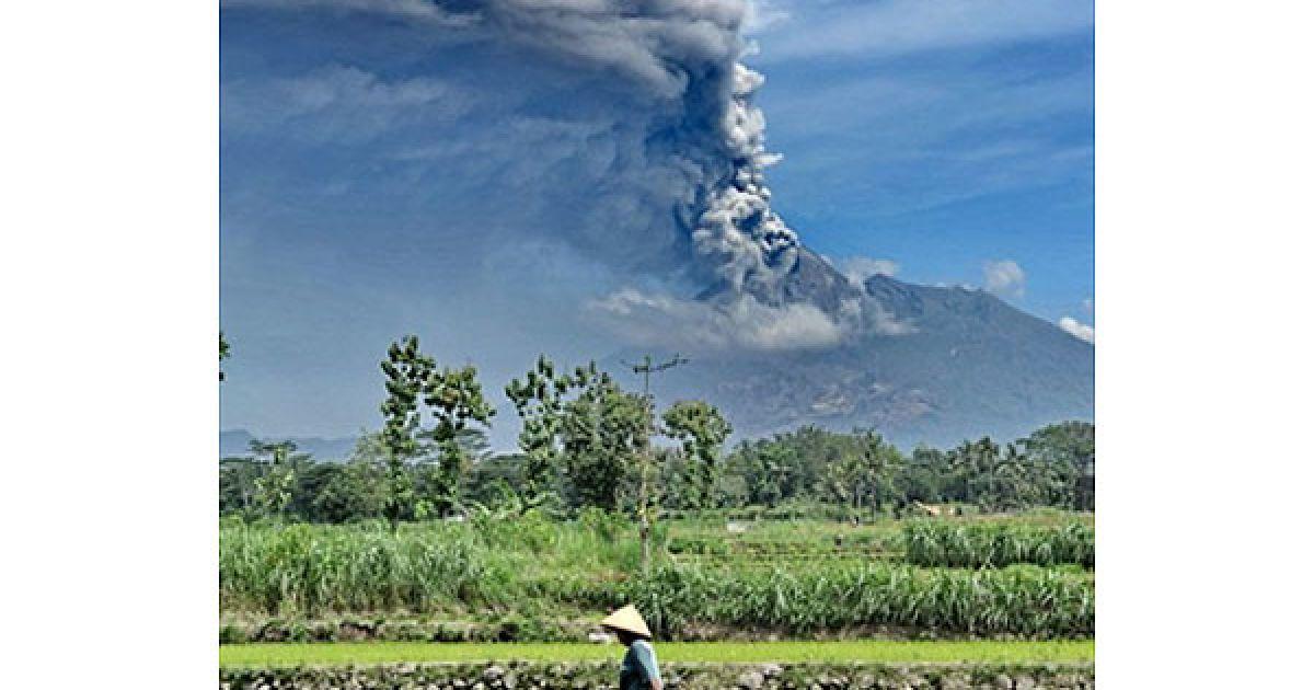 Індонезія, Слеман. Фермер йде через рисове поле на тлі хмар попелу, які викидає найактивніший вулкан Індонезії Мерапі. Мерапі почав вивергатися наприкінці жовтня. В результаті виверження, 194 особи загинули, понад 360 тисяч осіб були змушені переміститись до тимчасових таборів за межами небезпечної зони. @ AFP