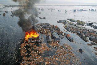 Потужний землетрус в Японії викликав цунамі