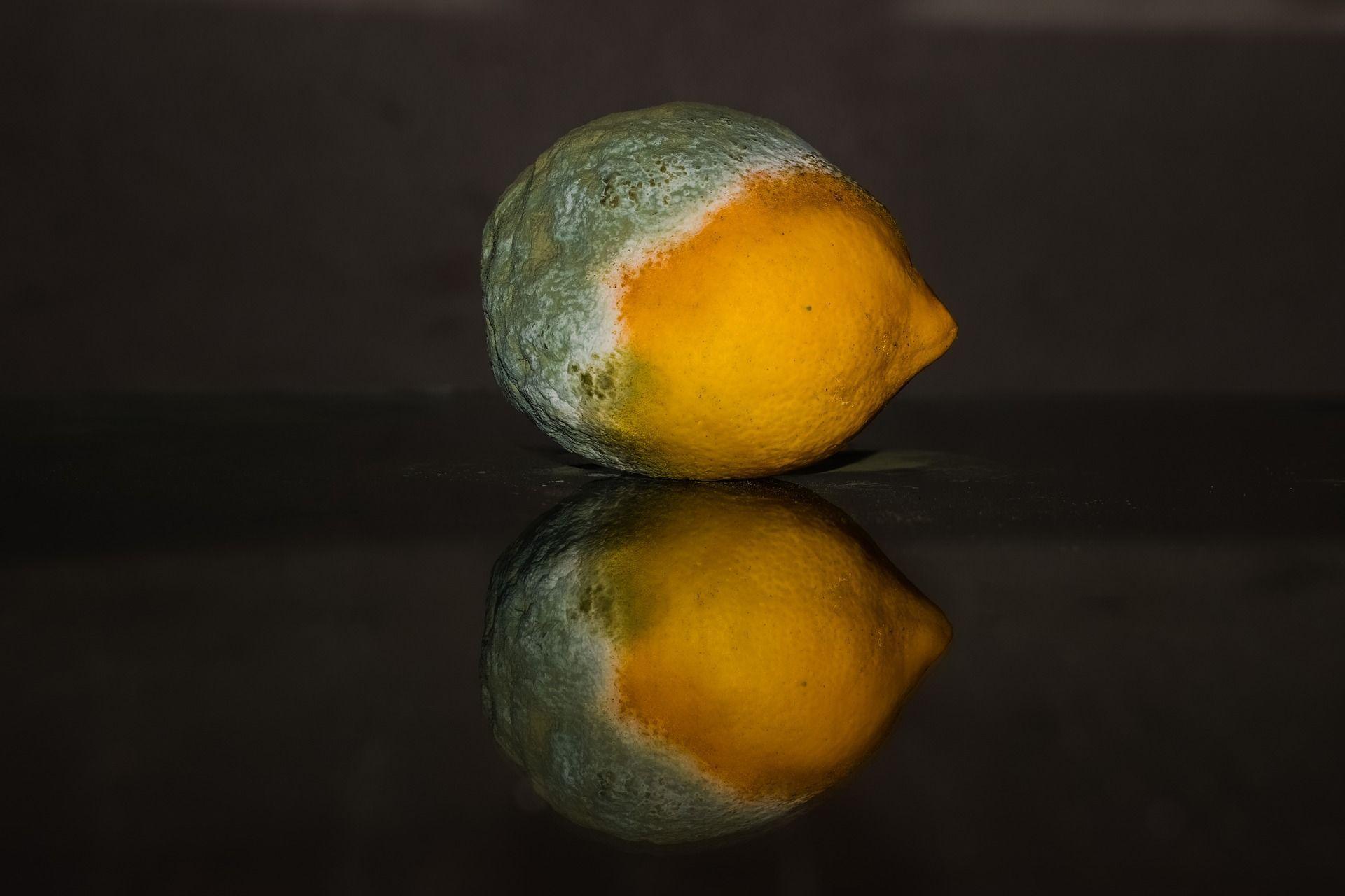 лимон, гниль