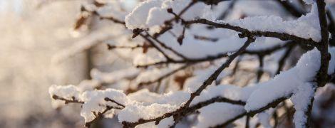 Понеділок буде з невеликим снігом та ожеледицею. Прогноз погоди на 19 лютого