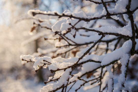 Прогноз погоды на воскресенье, 11 февраля: на часть Украины надвигаются сильные осадки