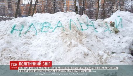 """Жительница Москвы написала краской на снегу """"Навальный"""", чтобы коммунальщики наконец-то убрали сугробы"""