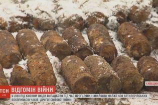 Возле трассы Киева обнаружили склад артснарядов времен Второй мировой войны