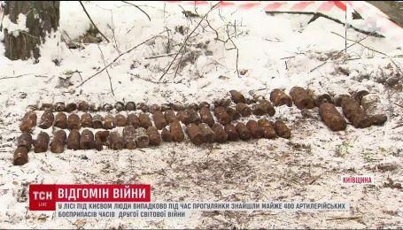 В лесу под Киевом нашли почти 400 снарядов Второй мировой войны