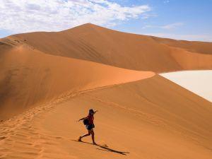Намібія: царство дикої природи та приголомшливих видів