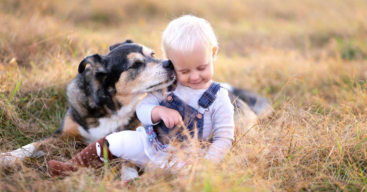 Чему учит ребенка общение с собакой