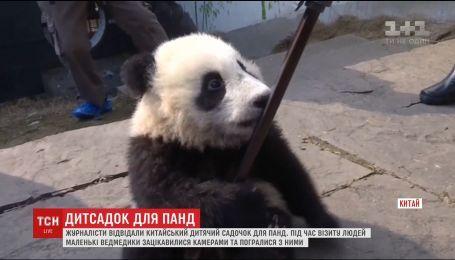Китайские малыши панд устроили веселую игру со штативами журналистов