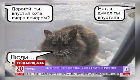 Почти за неделю до весны в Украину придут сильные морозы