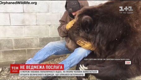 В Сети набирает популярность видео, на котором мужчина утешает 700-килограммового медведя
