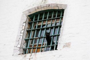 В украинских СИЗО в прошлом году погибло более 500 заключенных – Минюст