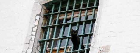 """В Минюсте назвали причину """"странного перенаселения"""" украинских СИЗО"""