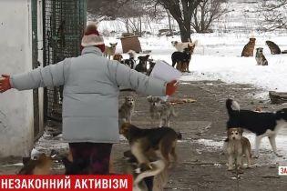 В Бердянске с бранью и проклятиями разбили авто коммунальщиков, которые отлавливали собак для приюта