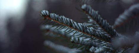 Лютневі морози: синоптики пообіцяли сувору погоду на 25 лютого