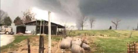 В США мощные торнадо унесли жизни минимум четырех человек