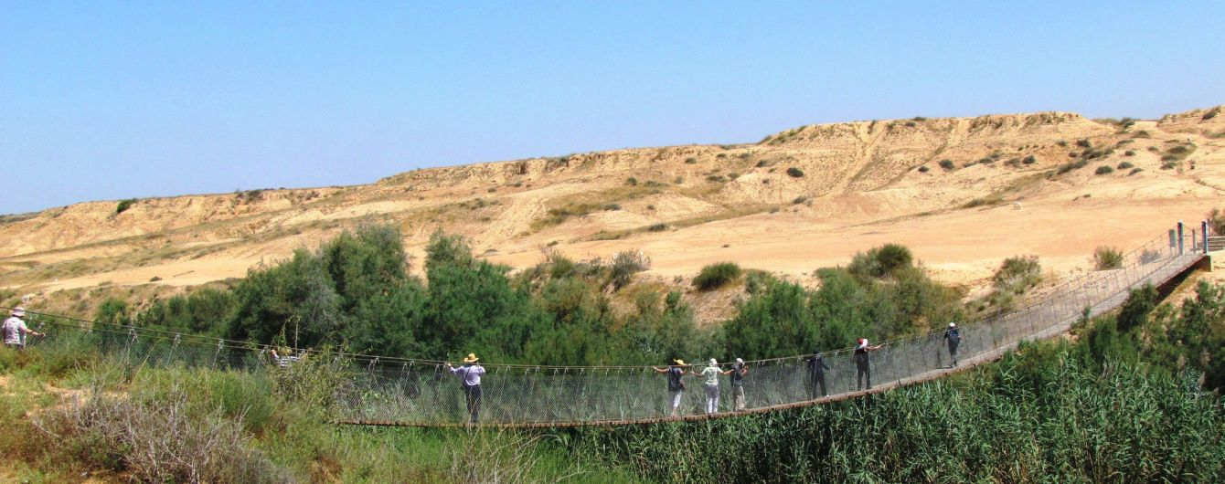 """""""Райский сад"""" среди песков и уникальная винодельня: почему стоит посетить пустыню Негев"""