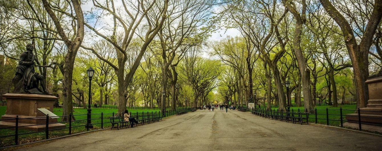 Атмосферні оази кам'яних джунглів: чим особливі парки Нью-Йорка