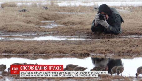Украинцы перенимают популярное в Европе хобби - наблюдение за редкими птицами