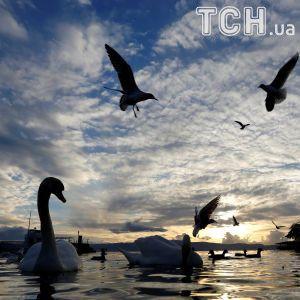 Синоптики назвали дату начала теплой весны в Украине