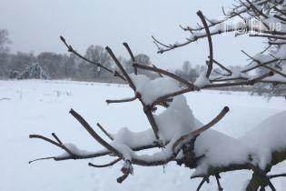 Весна в воздухе: из Украины отступает циклон, который принес снег и морозы