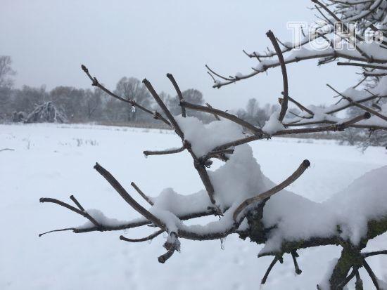 Весна в повітрі: з України відступає циклон, що приніс сніги і морози