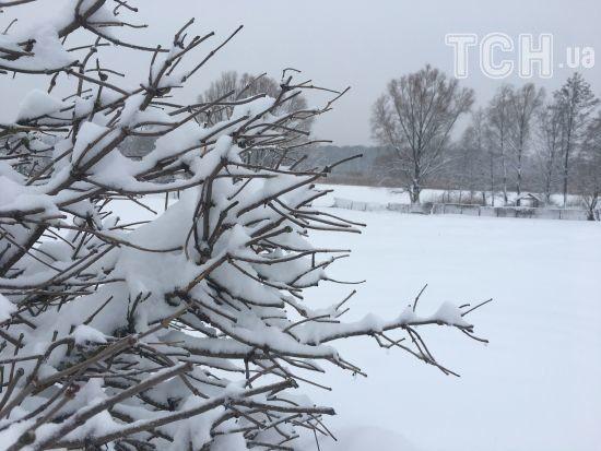 Україну знову почало засипати снігом. Прогноз погоди на 15 березня